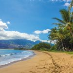 有吉の夏休み2016のハワイのお店やスポットをわかりやすくまとめてみた①